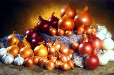 Cebollas: excelentes remedios caseros