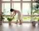 Plantas con buena energía para alegrar jardines
