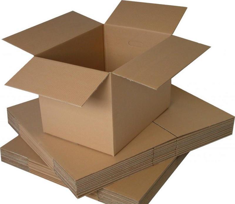 Hogar-carton-caja