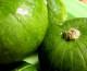 ¿Sabías que los zapallitos tienen propiedades nutritivas?