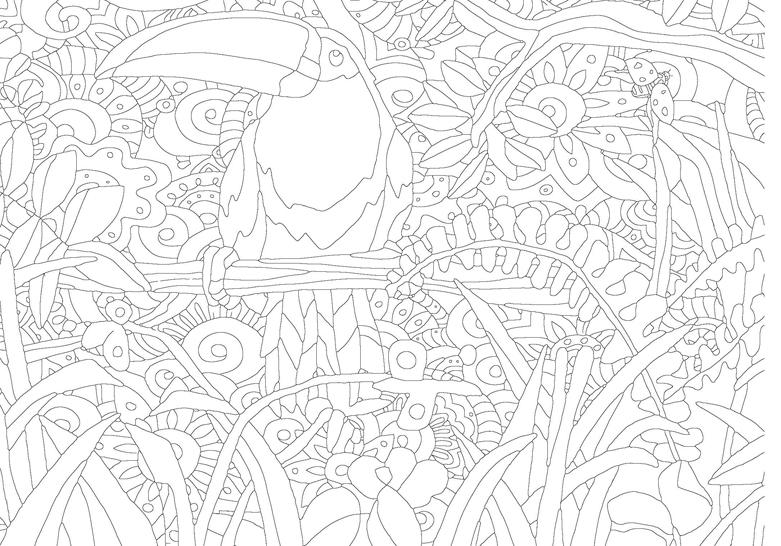 Naturaleza Encantada – Nuevo libro de colorear para adultos | Users Life